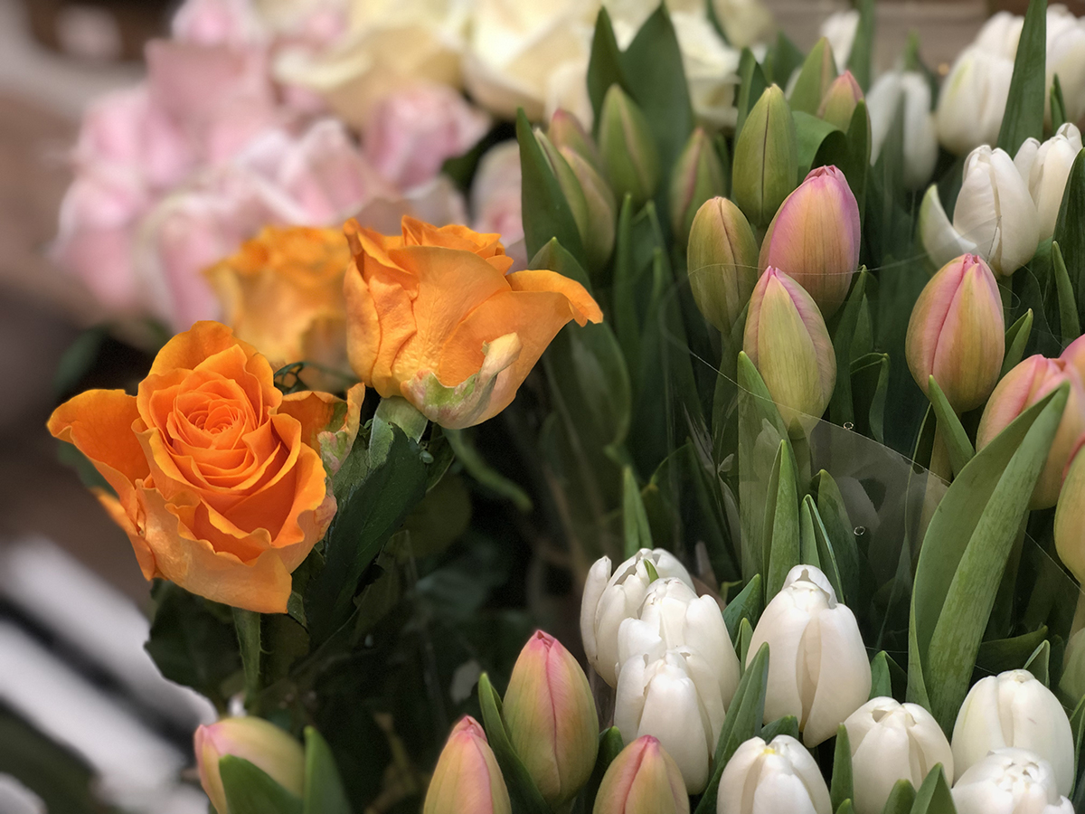 Les Commerces de la Bastide-Floral-2020-10-30-ouvert jusqua dimanche